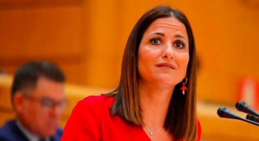 El PSOE reclama en el Senado más visibilidad, derechos y autonomía para las familias monoparentales